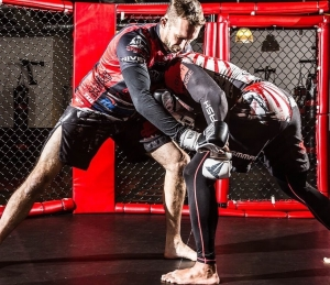 MMA-Grundlagen Workshop am 4.7.20